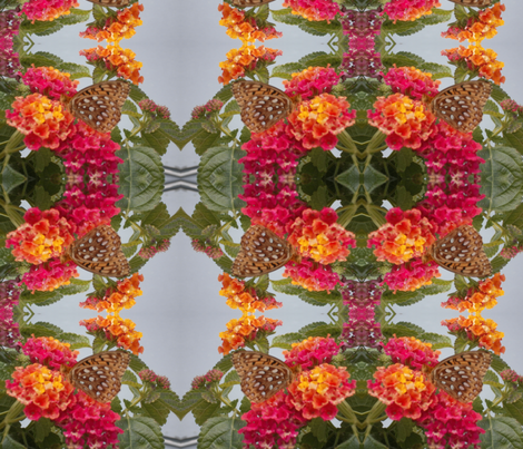 Butterfly in the Flowers  fabric by sterlingrun on Spoonflower - custom fabric