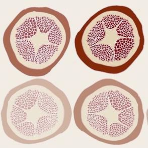 Fading Pomegranates