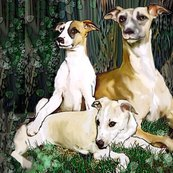 Rrrwhippet_family_grouping2_shop_thumb