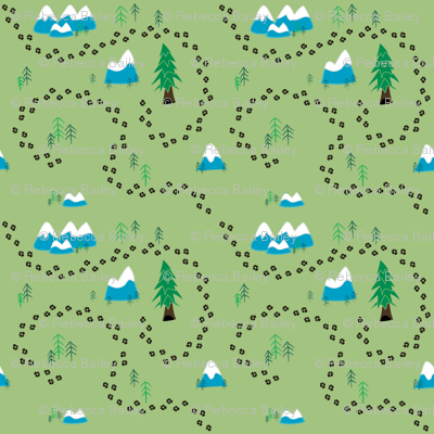 Fox_trail_pattern