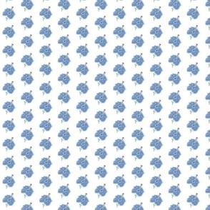 blue_hybiscus
