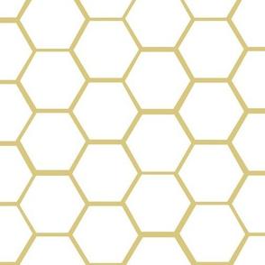 HoneyComb 3