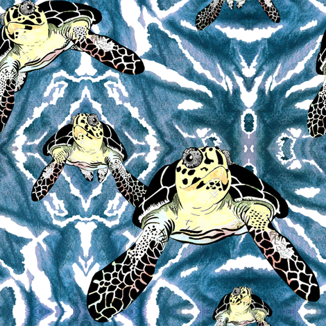 Turtles_in_Teal