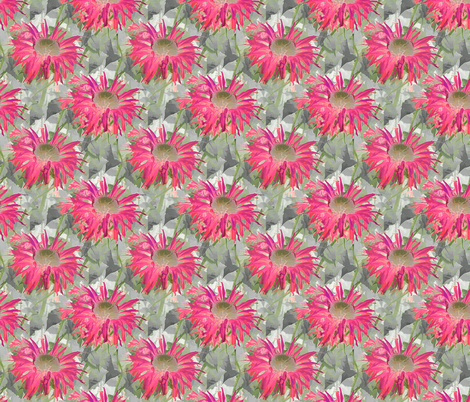 Spider Dahlia fabric by koalalady on Spoonflower - custom fabric