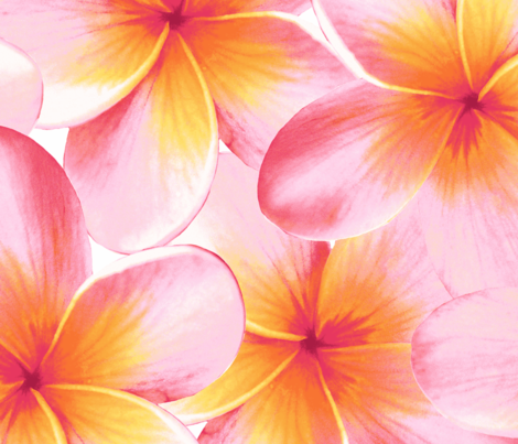 Sunset frangipani border fabric by neatdesigns on Spoonflower - custom fabric