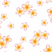 Rrsunset_frangipani_sheet_shop_thumb