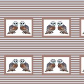 Rthe_owl_collection_8x8_stiped_shop_thumb