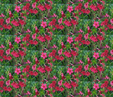 From Halukalani with Love fabric by sunshine12 on Spoonflower - custom fabric