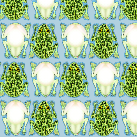 Frog Checkers, Cat Toys & Bookmarks fabric by glimmericks on Spoonflower - custom fabric