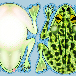 Frog Pillow Kit
