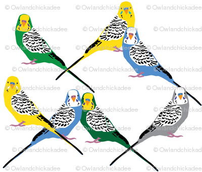 Parakeets Looking at You - Multicolor