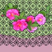Rrrose_garland_lt_green_and_flesh_black_lace_4__8_x72_shop_thumb