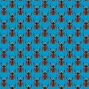 ugandensis beetle blue
