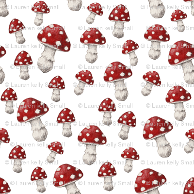MUSHROOM Red and White