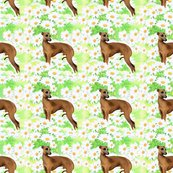 Rrrseamless_italian_greyhound_and_daisies_shop_thumb