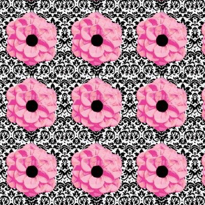 Pink Flowers on damask background