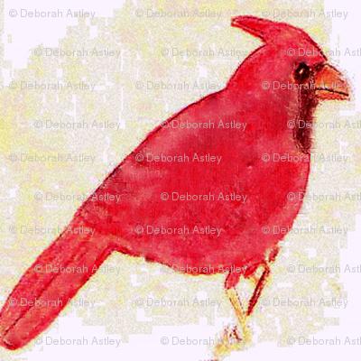 Cardinal Minuet
