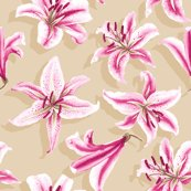 Rroriental_lily_shop_thumb