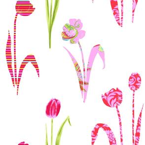 Bohemian Tulip