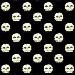 Bone Skull (Polka Dots)