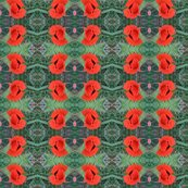 Rrrrpoppy_orange_shop_thumb