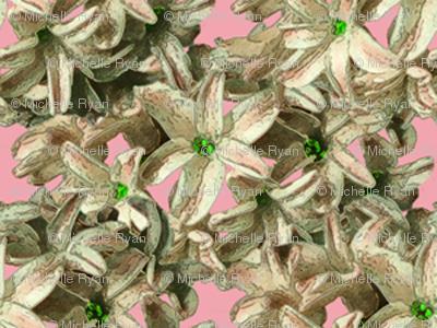 Hyacinth Flowers - yellow petals