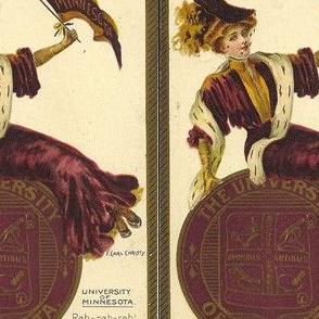 Minnesota University History - Large