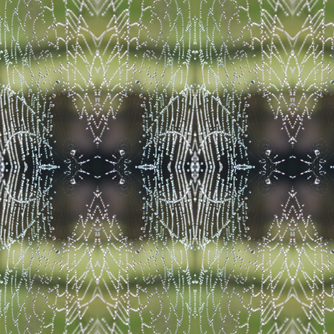 spider green/grey lace fabric by eat_my_sweet_dust on Spoonflower - custom fabric