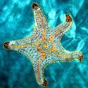 Rrrrrstarfish_for_spoonflower_shop_thumb