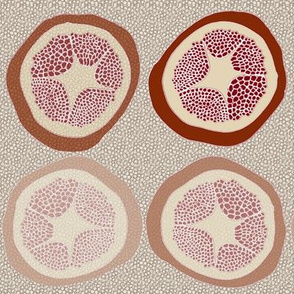 Fading Pomegranates with Pips
