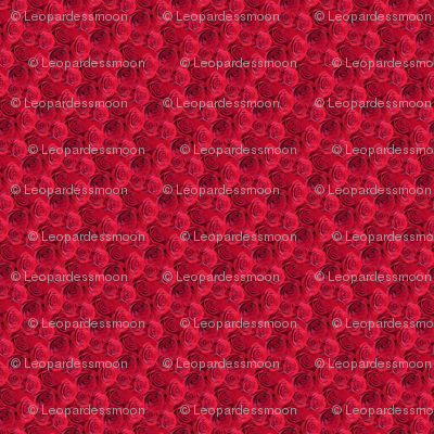 redflower_stripes