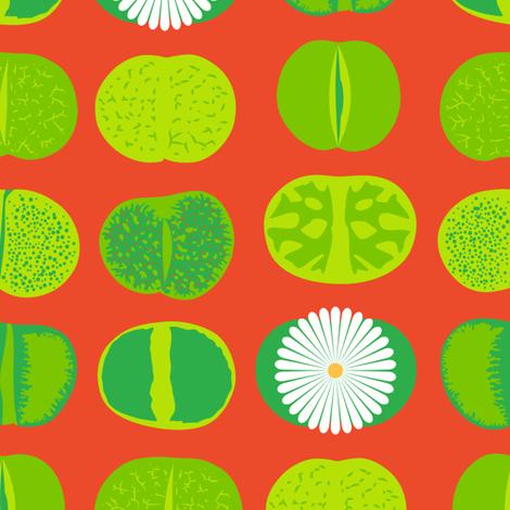 Lithops (Orange) fabric by nekineko on Spoonflower - custom fabric