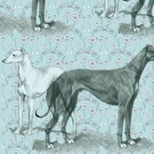 Rgreyhound_and_whippet_shop_thumb