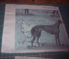the greyhound and the whippet fabric