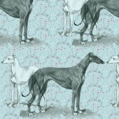 Rrgreyhound_and_whippet_shop_thumb