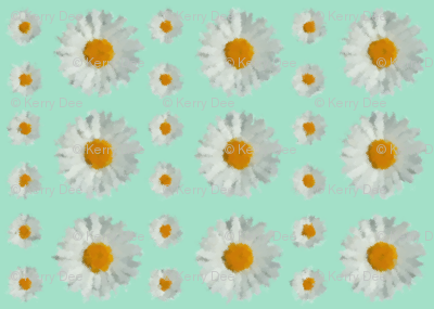 Daisies on SeaFoam Green