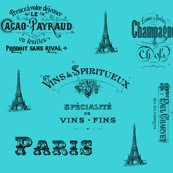 Rrrparis_aqua_collage_shop_thumb