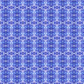 small blue hydrangea