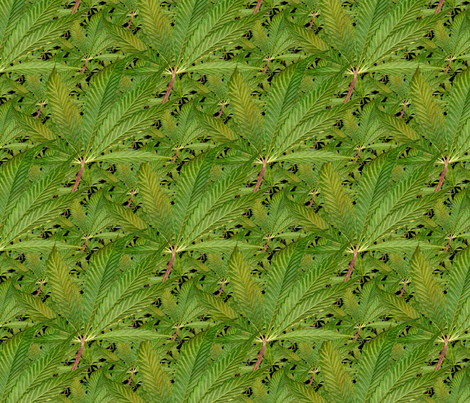 Weed Garden fabric by weedgarden on Spoonflower - custom fabric