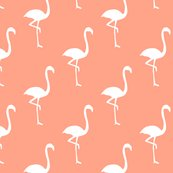 Rflamingopattern_coral-01_shop_thumb