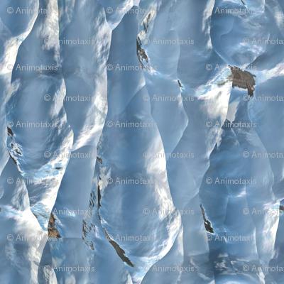 Iceberg Wall 1