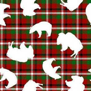Jumbled White Bears and Buffaloes