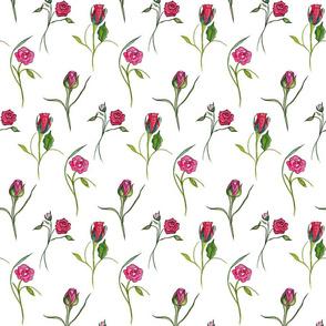 Dancing Roses White
