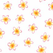 Rrfrangipani_sheet_shop_thumb