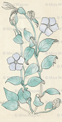 Vinca drawing - cloud colors