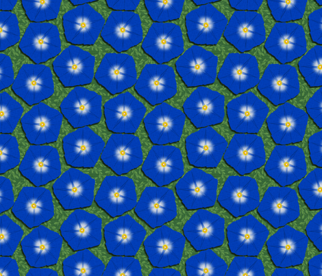 Morning Glories fabric by glimmericks on Spoonflower - custom fabric
