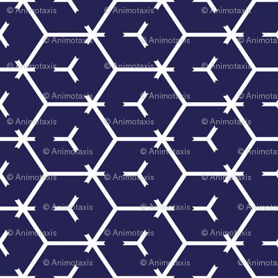 Honeycomb Motif 10