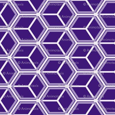 Honeycomb Motif 14