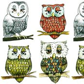 Rr4_owls_shop_thumb