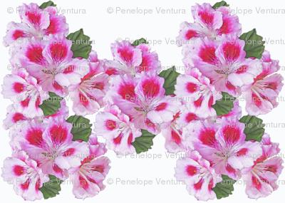 geranium_print
